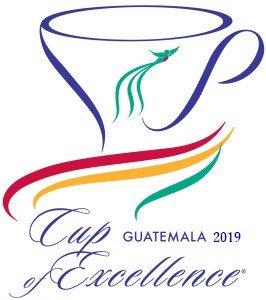 GUATEMALA COE 2019 #18 SANTA IRENE CATUAI(グアテマラ COE 2019 18位 サンタ・イレーネ農園 カツアイ種)