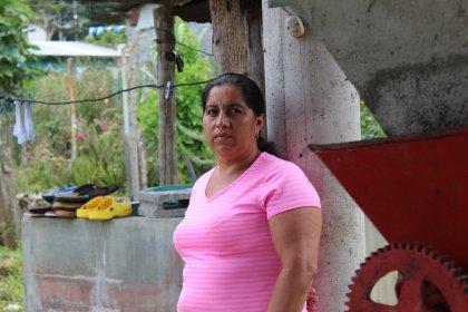 HONDURAS / SANTABARBARA MEMBRENO BOURBON(ホンジュラス サンタバルバラ メンブレーノ農園ブルボン種) 250g