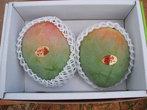 キーツマンゴー秀品 約1.5kg