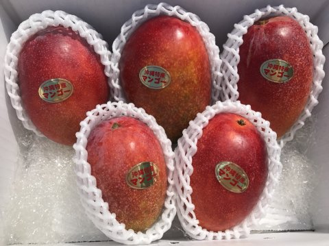 アップルマンゴー秀品 2kg