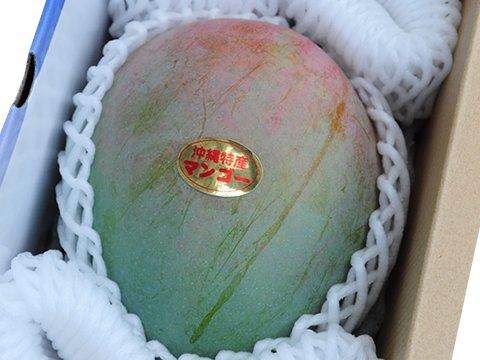 キーツマンゴー秀品 約1kg