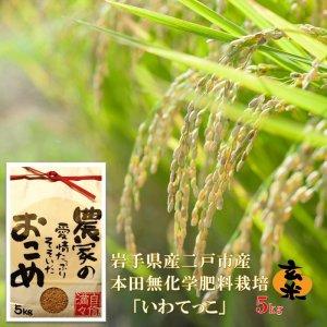 無化学肥料栽培 玄米「いわてっこ」 5kg