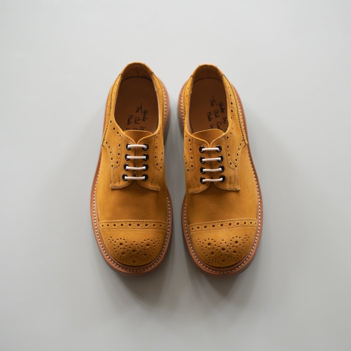 Quilp Shoes / M7675 Toe Cap Derby Brogue Shoe / Curry Suede