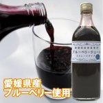 【ケース(6本入り)】</br>愛媛県産完熟ブルーベリー使用</br>たかやまブルーベリーストレートジュース 500ml