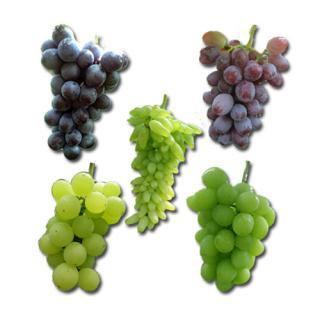 南アルプスのブドウと葡萄ジャムのセット