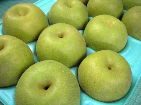 郡山市磐梯熱海産「福島の梨」2kg(6玉)~5kg(14玉)