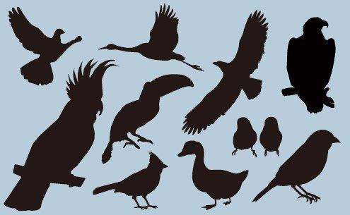 ワンポイントシルエット Bird(鳥)