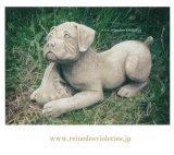 イギリス製 ガーデンオーナメント 犬 ドッグ 子犬 靴 石材 ストーン
