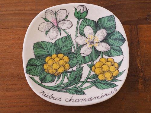 Arabia Botanica  プレート クラウドベリー