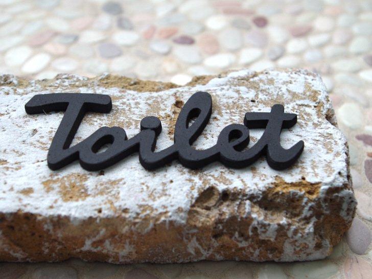 真鍮の筆記体トイレサイン ブラック