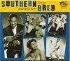 V/A - SOUTHERN BRED VOL.6 : TEXAS R'N'B ROCKERS (CD)