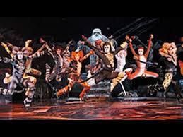 ジェリクルキャッツの舞踏会 〜CATSより〜 木曜日20:00−21:30 品川 担当RENAの後ろからの写真
