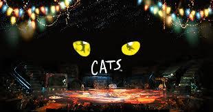 ジェリクルキャッツの舞踏会 〜CATSより〜振付体験2019年4月29日(祝日・月) 品川15:30−16:45の写真