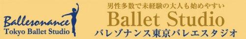 <img class='new_mark_img1' src='https://img.shop-pro.jp/img/new/icons12.gif' style='border:none;display:inline;margin:0px;padding:0px;width:auto;' />バレゾナンス東京バレエスタジオ 入会金の後ろからの写真