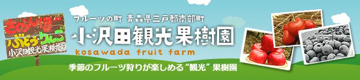 【小沢田観光果樹園】南部町のりんご、佐藤錦さくらんぼ、青梅・完熟梅の通販