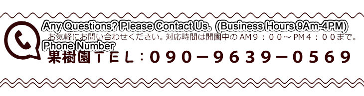 Any Questions? Please Contact Us.