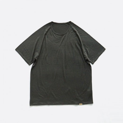 <img class='new_mark_img1' src='https://img.shop-pro.jp/img/new/icons57.gif' style='border:none;display:inline;margin:0px;padding:0px;width:auto;' />SUPER120S WASHABLE WOOL NEW S/S TEE
