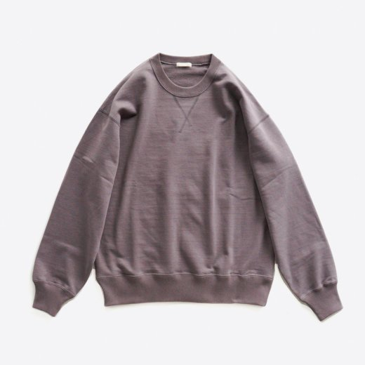 <img class='new_mark_img1' src='https://img.shop-pro.jp/img/new/icons1.gif' style='border:none;display:inline;margin:0px;padding:0px;width:auto;' />DRY FEEL SILKY TERRY SWEAT SHIRT
