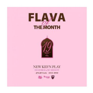 NEW KID'N PLAY【DJ GEORGE & MC MOGGYY】/FLAVA OF THE MONTH Vol,19