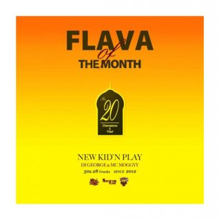 NEW KID'N PLAY【DJ GEORGE & MC MOGGYY】/FLAVA OF THE MONTH Vol,20