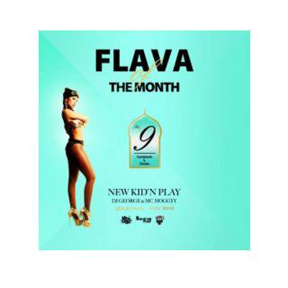 NEW KID'N PLAY【DJ GEORGE & MC MOGGYY】/FLAVA OF THE MONTH Vol,9