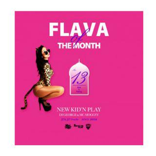 NEW KID'N PLAY【DJ GEORGE & MC MOGGYY】/FLAVA OF THE MONTH Vol,13