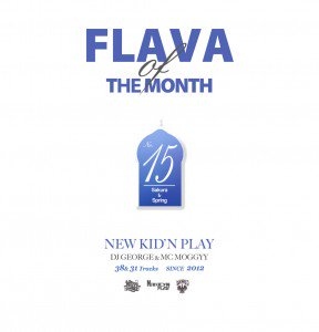 NEW KID'N PLAY【DJ GEORGE & MC MOGGYY】/FLAVA OF THE MONTH Vol,15