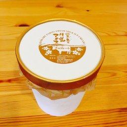 1リットルのカップアイス(チョコレート)