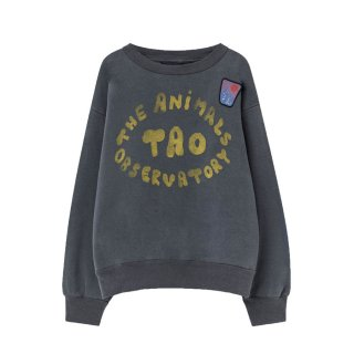 Blue Bear Sweatshirt 2-3Y