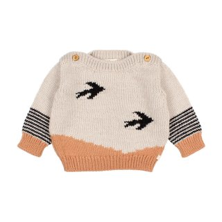 <img class='new_mark_img1' src='https://img.shop-pro.jp/img/new/icons1.gif' style='border:none;display:inline;margin:0px;padding:0px;width:auto;' />Birds Knit Jumper 12-24M