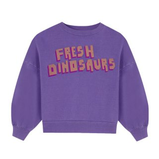 <img class='new_mark_img1' src='https://img.shop-pro.jp/img/new/icons1.gif' style='border:none;display:inline;margin:0px;padding:0px;width:auto;' />FRESH DINOSAURS Sweat Shirt 2Y-8Y