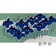 卓布あやめ(人間国宝・木村雨山作)