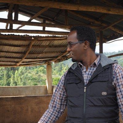 エチオピア シダマ ナチュラル|その他のイメージ1
