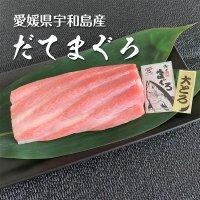 愛媛県産 極上だてまぐろ(本マグロ)大トロ柵(約200g)