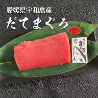 【お歳暮】愛媛県産 極上だてまぐろ(本マグロ)赤身短冊(約200g)