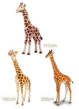 シュタイフ スタジオシリーズ キリン 110cm・150cm・255cm EAN502170、502200、502309