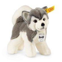 シュタイフ ハスキー犬(子犬)のバーニー 17cm EAN104985