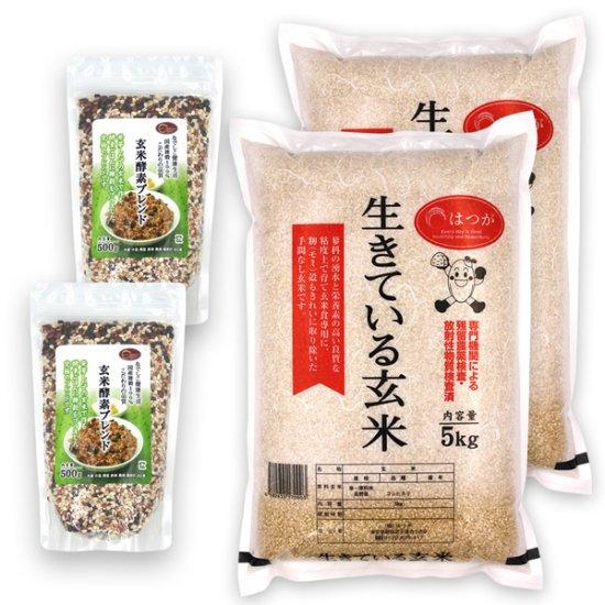 玄米酵素ごはんセットC(玄米酵素ブレンド500g×2 + 生きている玄米5kg×2) ☆令和2年産☆