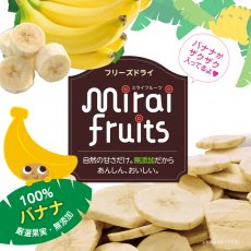mirai fruits(ミライフルーツ)バナナ 12g