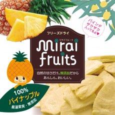 mirai fruits(ミライフルーツ)パイナップル 10g
