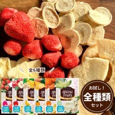 mirai-fruitsシリーズ【全6セット】いちご りんご バナナ パイナップル みかん メロン 無添加 無加糖 油不使用 ベビーフード ドライフルーツ