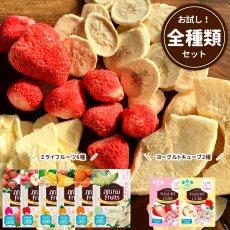 mirai-fruitsシリーズ【全8セット】 ミライフルーツ6個+ヨーグルトキューブ2個  無添加 無加糖 油不使用 ベビーフード ドライフルーツ