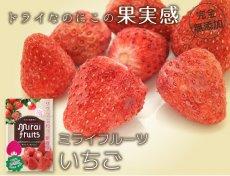 mirai-fruitsシリーズ【いちご 単品】 無添加 無加糖 油不使用 ベビーフード ドライフルーツ フリーズドライフルーツ 防災食品