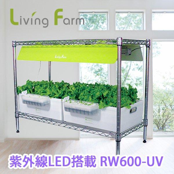 中型水耕栽培器RW600