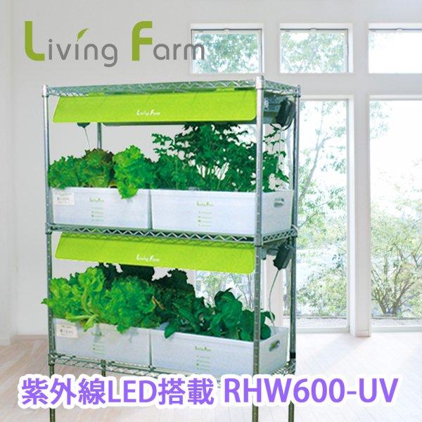 中型水耕栽培器RHW600