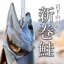 新巻鮭1本【大・約3kg前後】