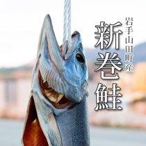 新巻鮭1本【中・約2.3kg前後】