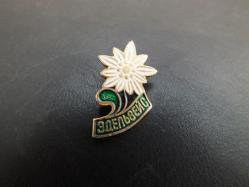 1980s Soviet Flower Pin