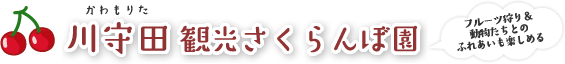 川守田観光さくらんぼ園 -月山錦 紅秀峰 佐藤錦