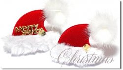 <img class='new_mark_img1' src='https://img.shop-pro.jp/img/new/icons55.gif' style='border:none;display:inline;margin:0px;padding:0px;width:auto;' />Christmas*